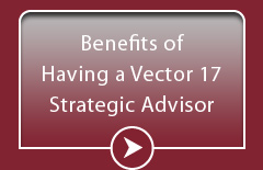 Benefits of having a Vector 17 Strategic Advisor